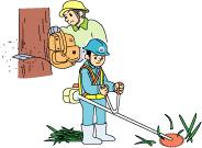 木質系廃棄物処分の流れ①