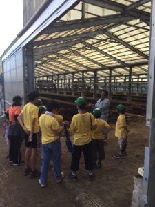 金武有機堆肥センターの堆肥レーン